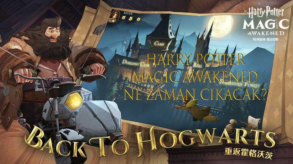 harry-potter-magic-awakened-indir